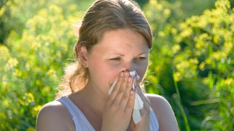 allergia-tanacsadas